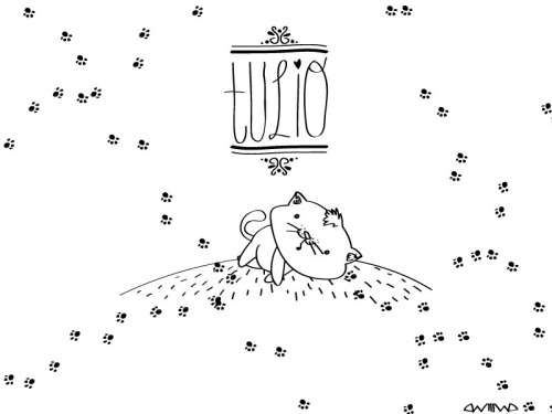Tulio